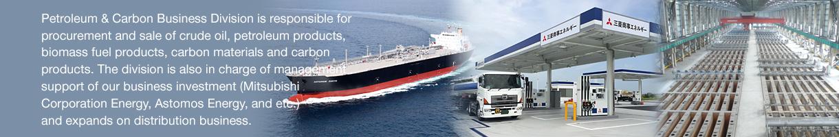Energy Business Group : Petroleum & Carbon Business Division