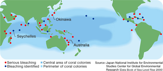Coral reefs in crisis mitsubishi corporation 1998 map of areas around the world affected by coral bleaching gumiabroncs Images